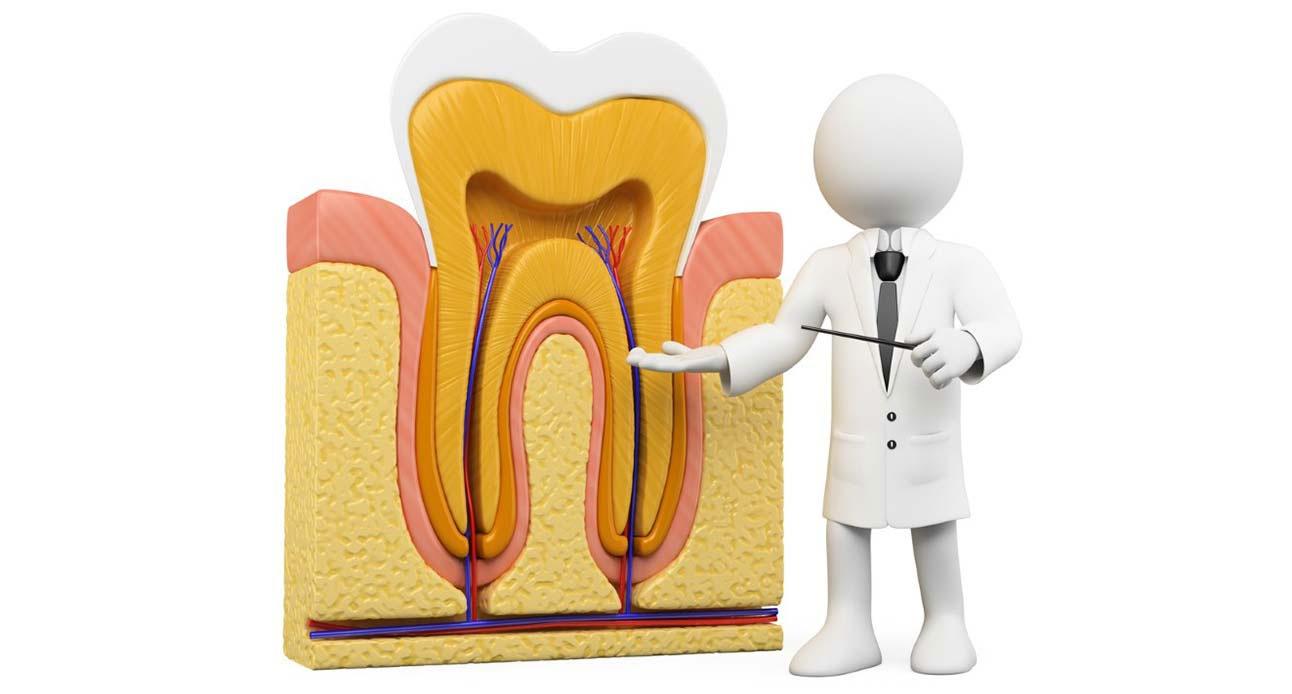 Devitalizzazione<br /> dei denti